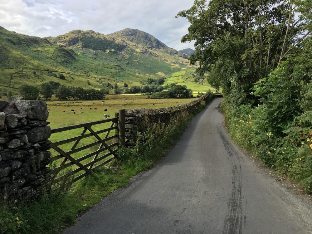 DVSA Syllabus narrow country road